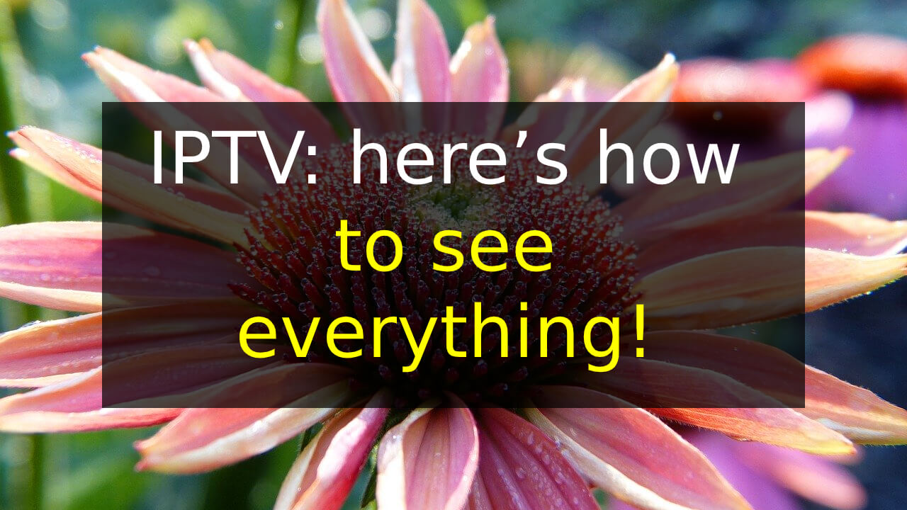 IPTV: here's how to see everything!